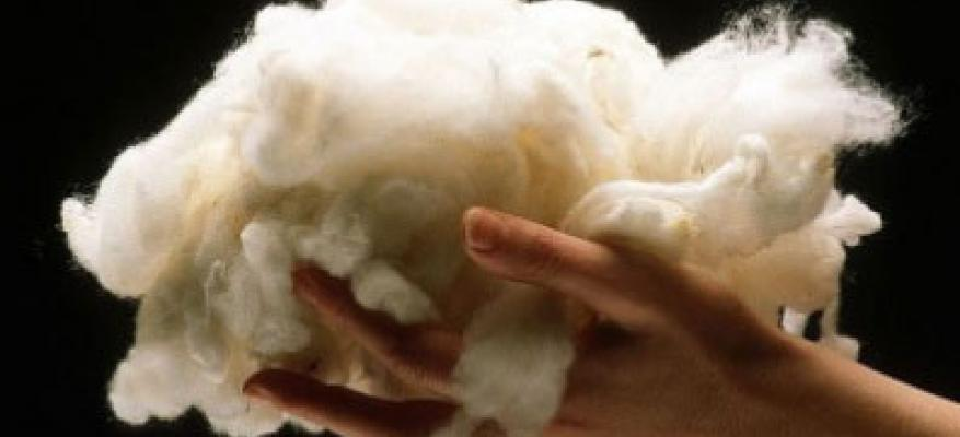 What is Tussah silk